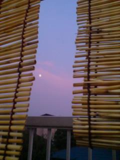 ◆皆既月食